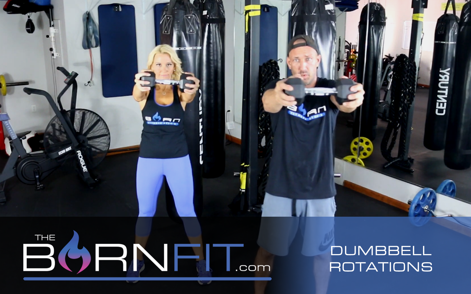 Dumbbell Rotations workouts